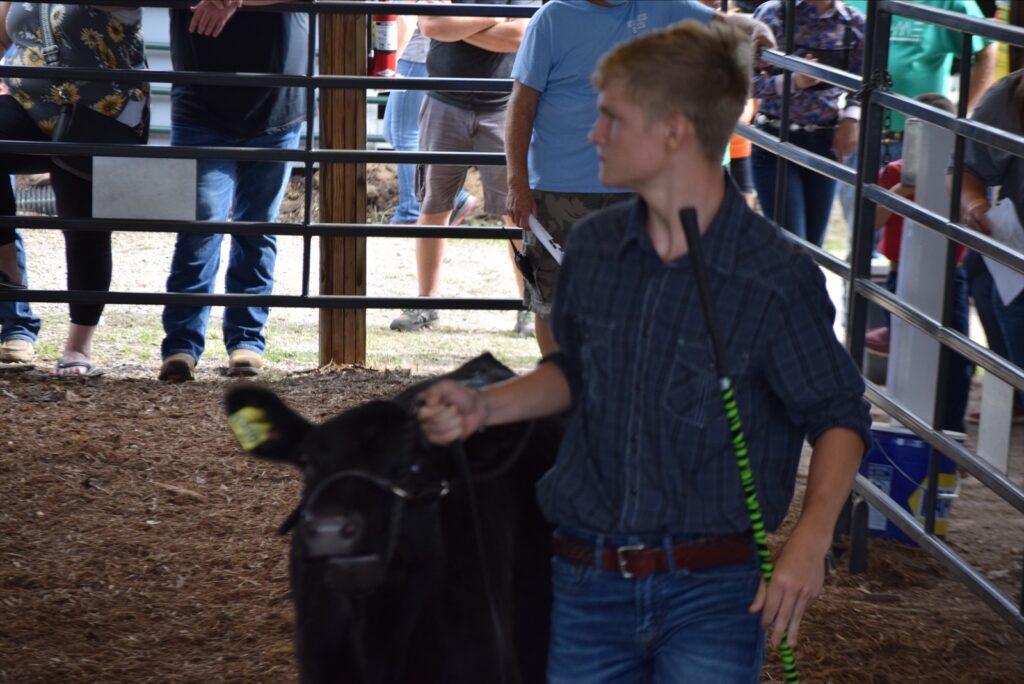 2020 Meigs County Fair Beef Show