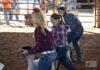 2020 Meigs County Fair Sheep Show